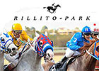 New Management for 2015 at Rillito Park
