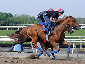 Ring Weekend works at Fair Hill on May 10, 2014.
