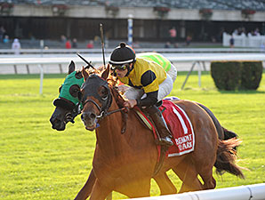 Ring Weekend wins the 2014 Hill Prince.