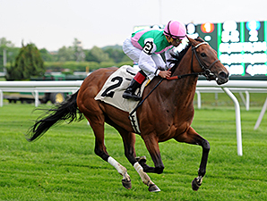 Riposte wins the 2014 Sheepshead Bay.