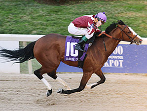 Rise Up wins the 2013 Mountaineer Juvenile Stakes.