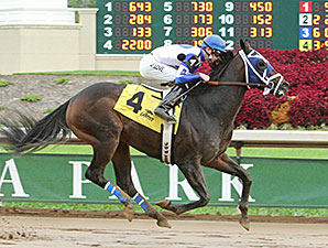 Rivers Run Deep wins the 2014 Best of Ohio Sprint Stakes.