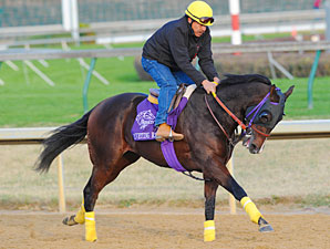 Riveting Reason Breeders' Cup 2010