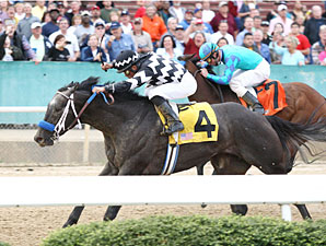 Road Ready wins the 2011 Bachelor.
