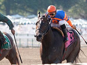Roaring Lion wins the 2010 Mr. Prospector.