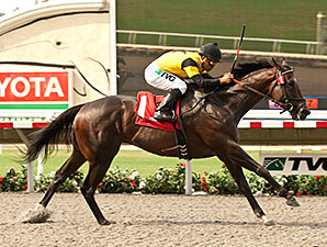 Rock Me Baby wins the California Dreamin 7/27/2014.