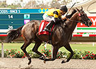 Stakes Winner Rock Me Baby Retired, Adopted