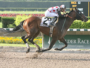 Wolfson Turns Stakes Hat Trick at Calder