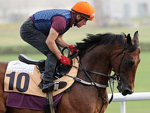 Rocket Man - Dubai 2012