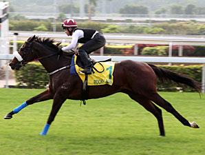Rocket Man in Hong Kong on December 7, 2011.