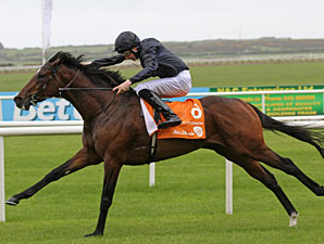 'Roderic' Rolls Home in Irish 2,000 Guineas