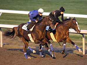 Rogue Romance and Harlan's Ruby work together at Keeneland on October 23, 2010.