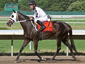 Romacaca wins the Taylor Made Matchmaker Stakes.