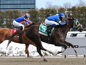 Roman Chestnut wins the 2010 Busher Stakes.