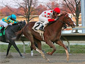 Romantic Hideaway wins the 2009 Bradywine Stakes.
