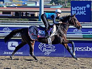 Romantica - Breeders' Cup 2013 - Santa Anita