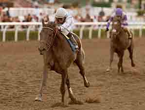 Ron the Greek wins the 2012 Santa Anita Handicap.