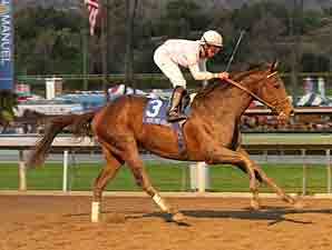 Six Grade I Winners in Jockey Club Gold Cup