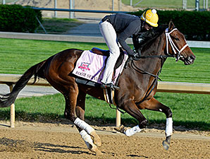 Room Service Will Not Run in Kentucky Oaks