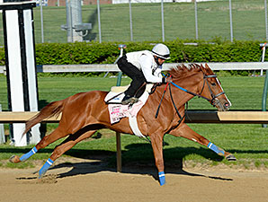 Rosalind Gets Maintenance Work in Oaks Prep