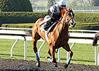 Rosalind Works Toward Kentucky Oaks