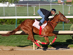 Rose to Gold - Churchill Downs, April 20, 2013.