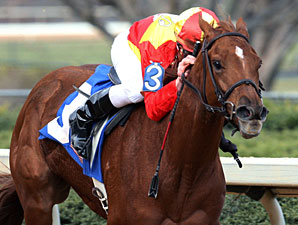 Fantasy Stakes Next for Upstart Rose to Gold