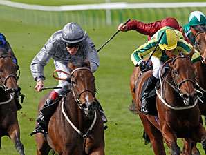 Rosdhu Queen wins the 2012 Jaguar Cars Cheveley Park Stakes.