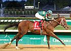 Rothko Rolls to Convincing Aristides Win