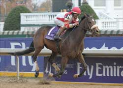 Distaff Winner Round Pond Injured, Retired