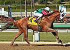 Alpha Decision Leads to Wider La. Derby Field