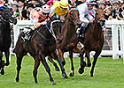 Record Financials for England's Jockey Club