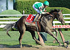 Royal Delta, Winchester Work at Belmont