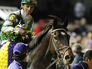 Royal Delta Reunited With Trainer Mott