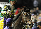 Royal Delta Scheduled to Return in Sabin
