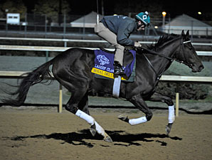 Royal Delta at Churchill Downs, October 29, 2011.