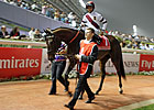 Reflecting on Royal Delta&#39;s Dubai World Cup