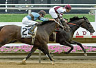 Delaware Handicap, Hopeful Now Grade I