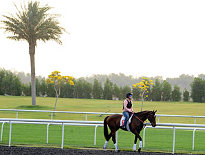 Royal Delta - Dubai 2012