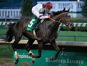 Royal Delta, It's Tricky Are Beldame Stars