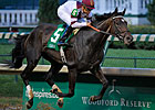 Royal Delta, It&#39;s Tricky Are Beldame Stars