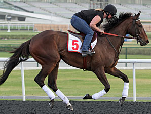 Baffert Runners Work, Royal Delta Gallops
