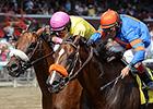 Royal Posse Aces Evan Shipman Stakes Debut