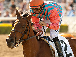 Rumor Seeks First Grade I in Humana Distaff