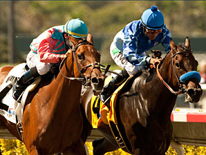 Rumor (left) wins the 2011 C.e.r.f. Stakes.