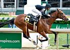 Run Away and Hide Scores Kentucky Stakes
