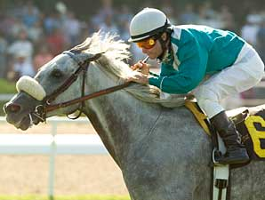 Runaway Dancer won the 2007 Sunset Handicap (gr. II) at Hollywood Park.