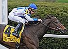 Rutherienne Rallies to Take Jenny Wiley