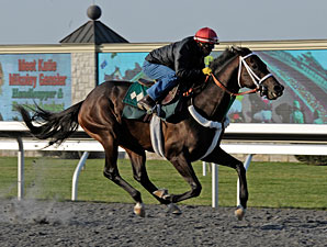 Blue Grass Contenders Tune Up in Kentucky