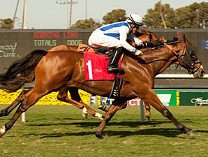 Ryehill Dreamer wins the 2011 American Handicap.